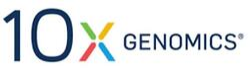 10x logo white